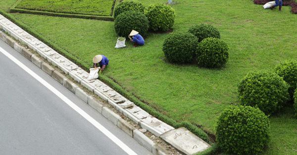 [Video]: Ngừng chi 53 tỷ mỗi năm cho cắt cỏ, đại lộ hiện đại nhất Việt Nam giờ ra sao?