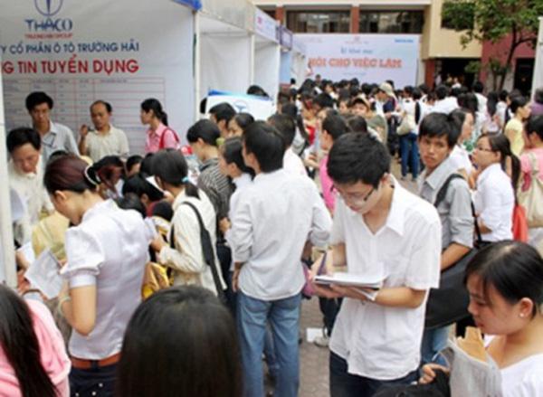 Tỷ lệ lao động có trình độ đại học thất nghiệp đã giảm mạnh