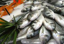 Chọn hải sản tươi ngon